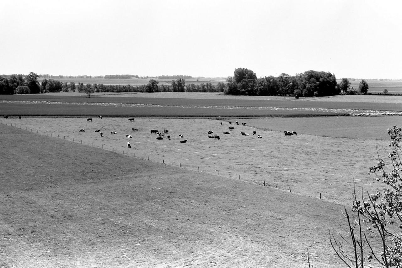 Uitzicht vanaf de molen aan de zuidkant, richting de boerderijen van Toxopeus en Noordhuis.