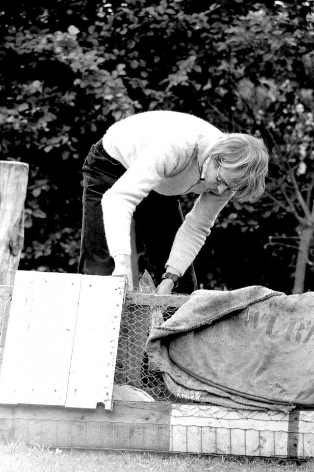 Rinus verzorgt de konijnen (foto 2)