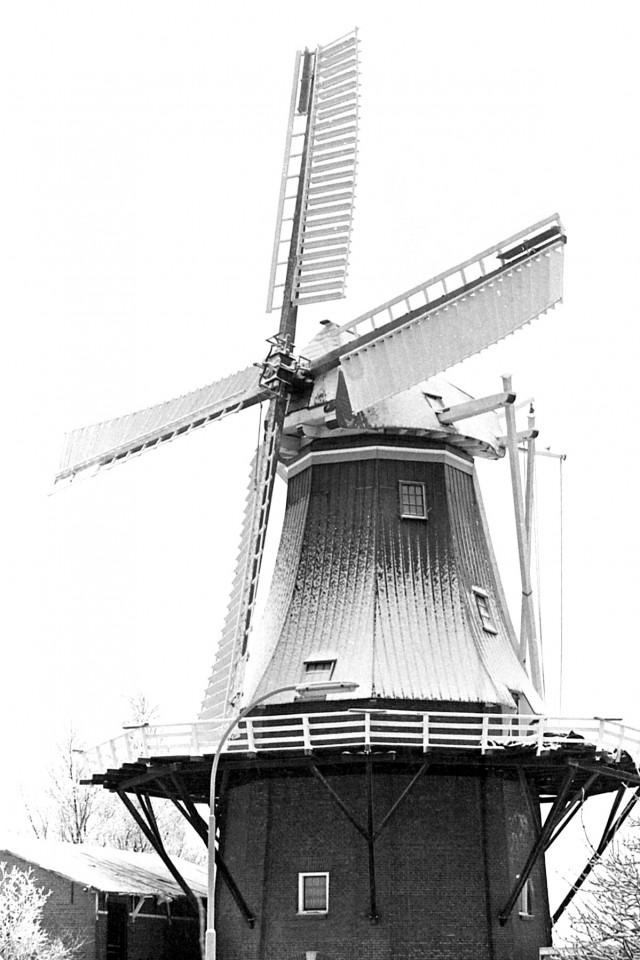De nieuwe molen in eerste winters tenue, ca. 1981